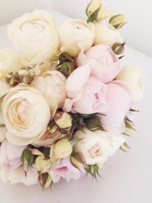 austin_rose_15