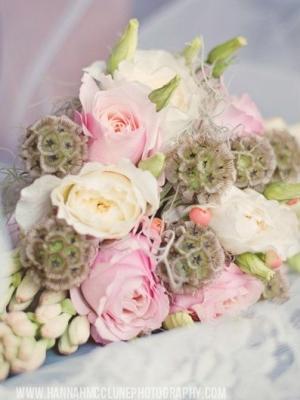 austin_rose_45