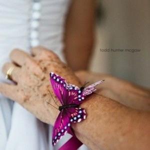 svadba-babochki-10