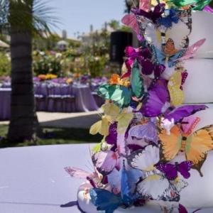 svadebnii-tort-babochki-09