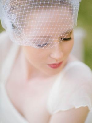 birdcage_veil_48