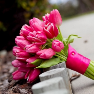 buket-tulip3