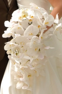 cascade_bouquet_14