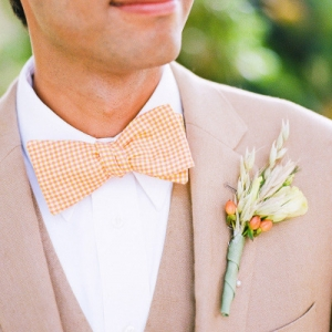 color_bowtie_08