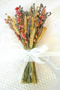 dried_flowers_10