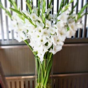 gladiolusy-v-svadebnoj-floristike-1