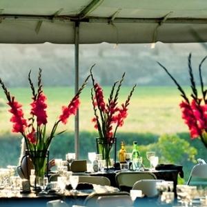 gladiolusy-v-svadebnoj-floristike-3