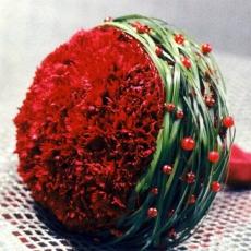 carnation-bouquet-with-grass-collar