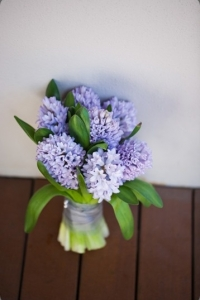 hyacinth_06