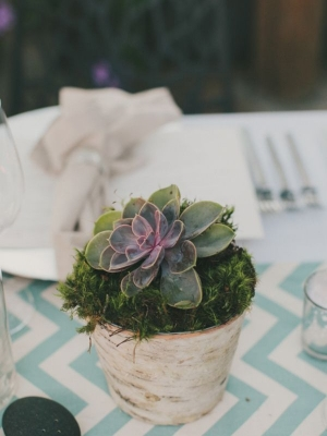 moss_wedding-decor_49