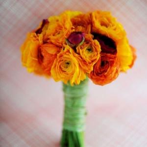 orange-tea-roses