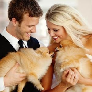 pitomcy-na-svadbe-2