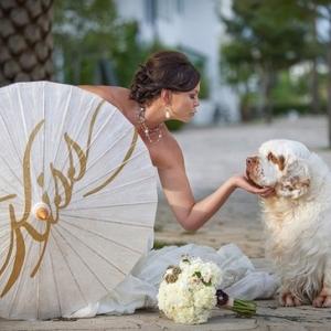 pitomcy-na-svadbe-9