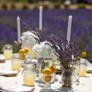 svadba-limon-lavanda-09-1