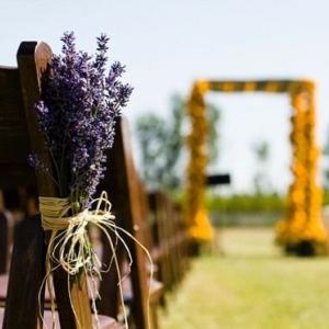 svadba-limon-lavanda-ceremonia