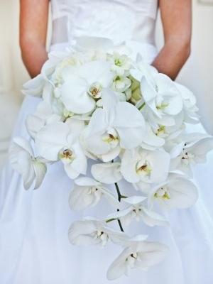 svadebnyj-buket-iz-orhidej-48