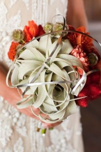 tillandsia_bouquet_14