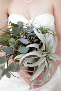 tillandsia_bouquet_23