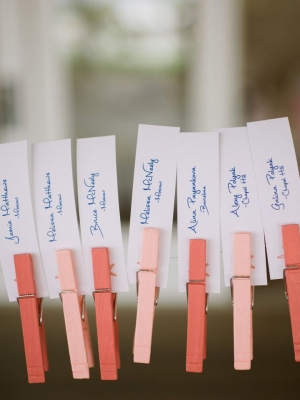 wedding_clothespins_22