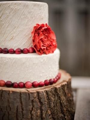 winter_cake_10