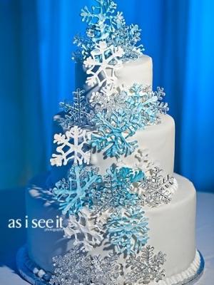 zimniy-svadebniy-tort-0039