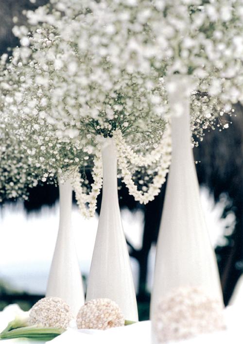 white_flowers01