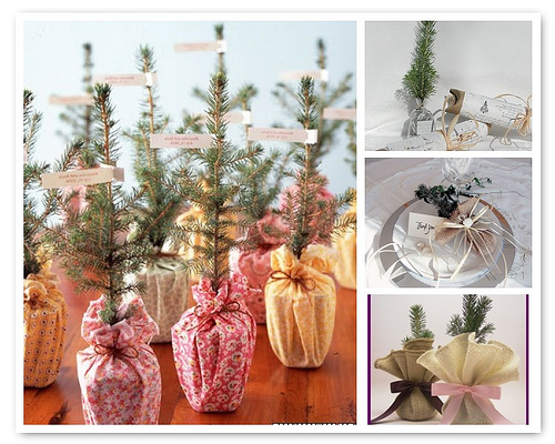 Eco-friendly winter wedding favors (1)