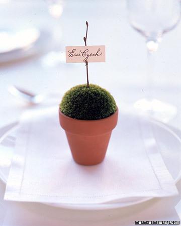 зеленая свадьба карточки для рассадки гостей