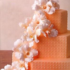 svadebnii-tort-oranjevii-23
