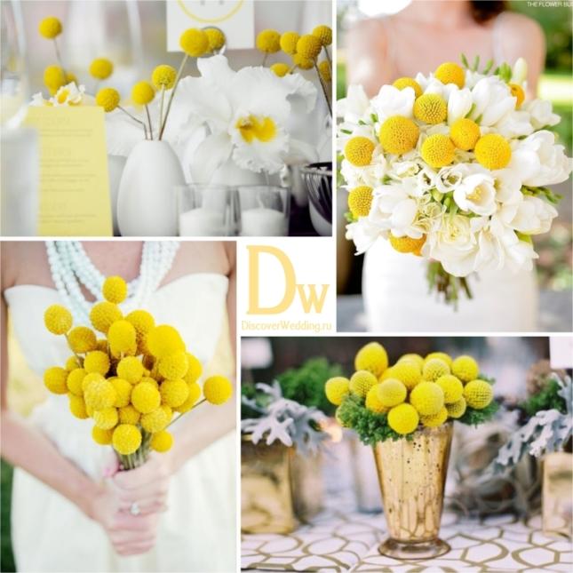 Yellow_flowers_04