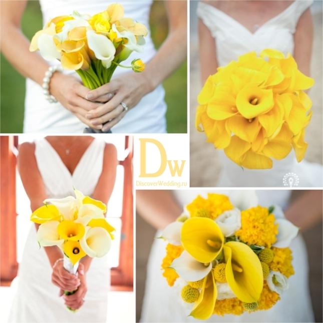 Yellow_flowers_06