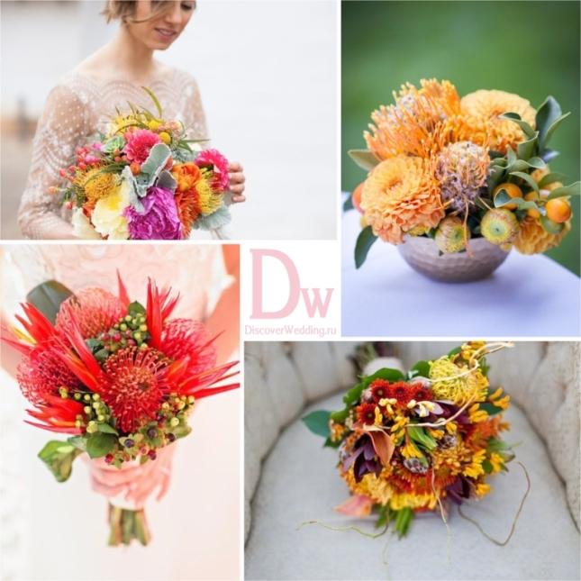 Exotic_flowers_03